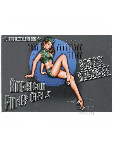 Carte postale, Pin-Up Air Force