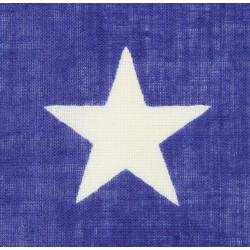 Flag, US, 48 Stars, printed, 3' X 5' Ft.