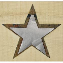 Ensemble Flag Banner + Silver star