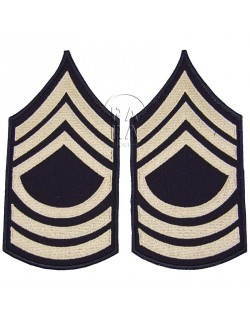 Master Sergeant rank insignia