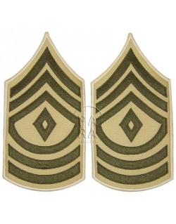 Grades en tissu de First Sergeant, été