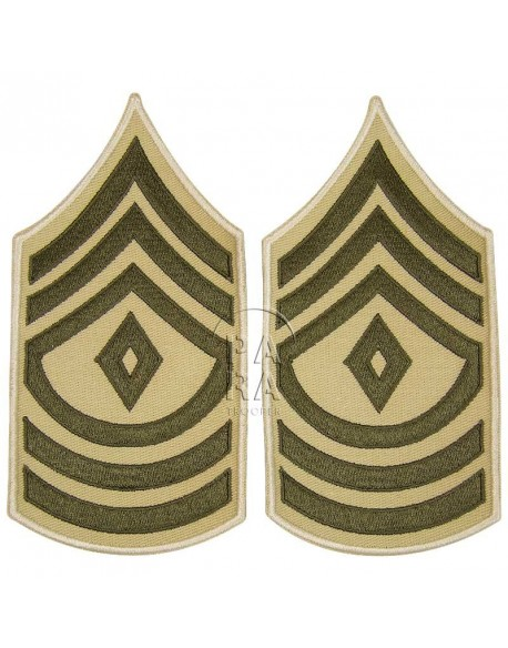 Rank, Insignia, First Sergeant, Summer