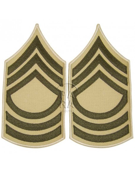 Rank, Insignia, Master Sergeant, Summer
