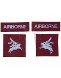 Set, airborne insignia