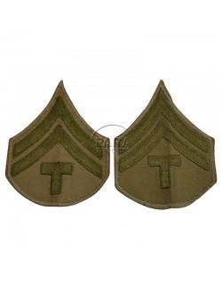 Grades en tissu de Caporal Technicien T/5, chino
