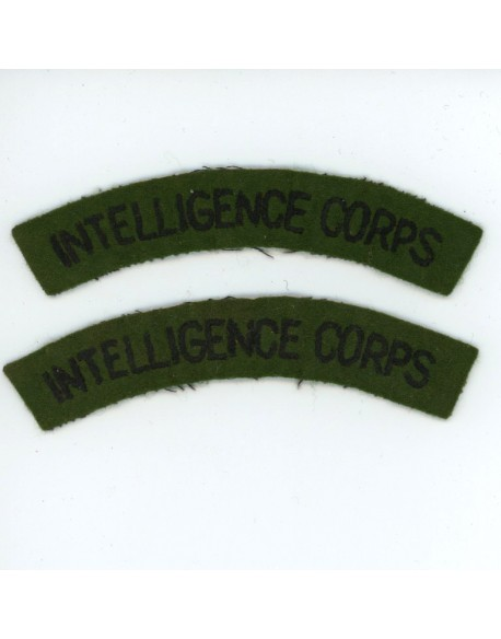 Paire d'insignes Intelligence Corps