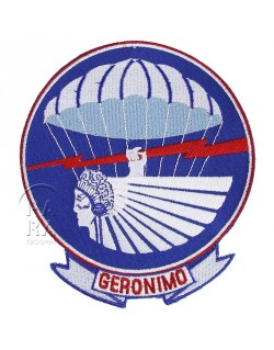 Patch de poitrine du 501ème régiment parachutiste