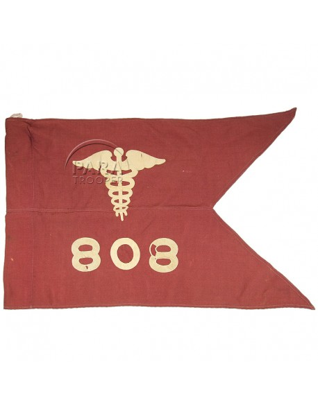 Fanion, 808th Hospital Center