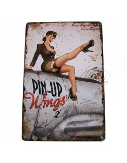 Plaque, Pin-Up Wings