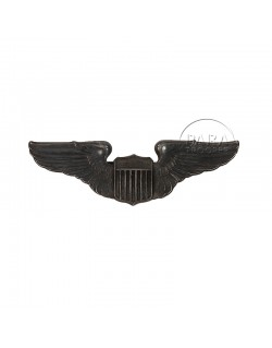 Wings, Pilot, USAAF, Sterling