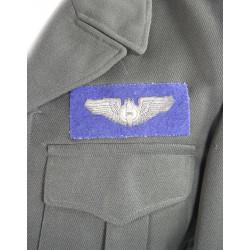Blouson Ike, Officier, 8th AF, chocolat, Bombardier