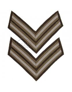 Paire de grades de Corporal