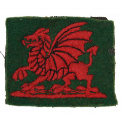 Insigne, British Troops South Wales